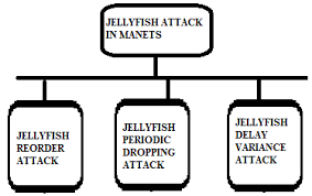 Jellyfish Classification Download Scientific Diagram