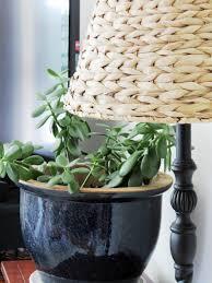 cheap office plants. Fall House Tour | Indigo \u0026 Honey Cheap Office Plants