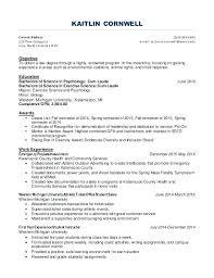 Cashier Resume Examples Resume Examples For A Cashier Cashier Resume