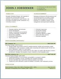 Free Professional Resume Template Downloads Example