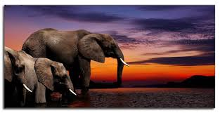 large elephants watch african sun set canvas wall art picture 42 x 20 inch print on african elephant canvas wall art with large elephants watch african sun set canvas wall art picture 42 x
