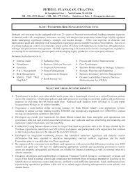 Impactful Professional Management Resume Examples