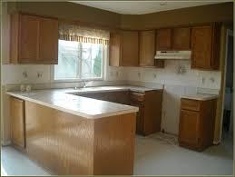 Reface Kitchen Cabinets Lowes Kitchens Unique Lowes Kitchen Cabinets Kitchen Cabinet Refacing In