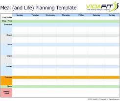 personal plan template life plan template michael hyatt sample excel planning getpicks co