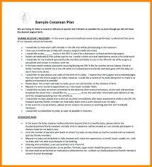 C Section Birth Plan Examples Example Of Hospital Birth Plan Template Google Docs Stormcraft Co