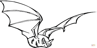 Small Picture Bat 17 coloring page Free Printable Coloring Pages