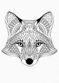 Kolorowanki Dla Dorosłych Fox Vos Kleurplaten Dieren Inside