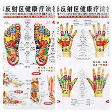 Hand Chart Amazon Com Chinese English Chart Of Foot Hand Reflective