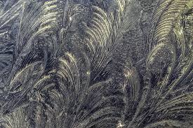 What causes these beautiful frost patterns theWeather Club Simple Patterns