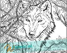 Small Picture Realistic Wolf Coloring Pages Coloring Coloring Pages