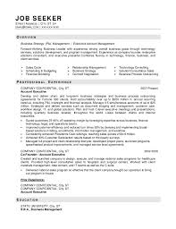 Sample Resume Business Owner
