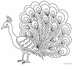 Small Picture Printable Peacock Coloring Pages For Kids Cool2bKids