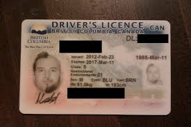 Half-beard Photo Half-hair License Mary The Sue Driver's