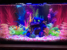 Glofish Light Bar Aquascape Bubble Light Fish Pogot Bietthunghiduong Co
