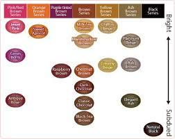 Liese Hair Dye Color Chart Angie Beauty Diaries Liese Creamy Bubble Color Black Tea