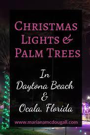 Christmas Light Displays Daytona Beach Christmas Lights Palm Trees In Daytona Beach And Ocala