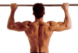 Pull Up Workout Chart The Perfect Pull Up Workout Routine