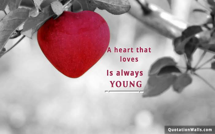 romantic wallpapers for mobile with quotes