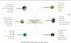 Emotion Code Flow Chart Pdf Learn About How Dr Tina Huang Uses The Body Code To Release