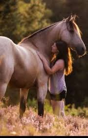 Die Bestenschönsten Pferde Sprüche Pauli Wattpad