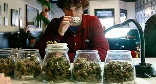 Medical Marijuana Vending Machine Stock Simple Marijuana Stocks How To Legally Invest In The Ultimate Cash Crop