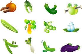 fruits and vegetables clip art.  Art Vegetable Clip Art Of Four Intended Fruits And Vegetables Clip Art T