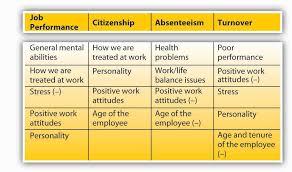 What Is Organizational Behavior 4 3 Work Behaviors Organizational Behavior