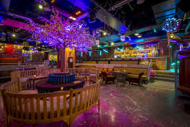 cool basements. Modren Basements Cafe Kaizen Main Room In Cool Basements S