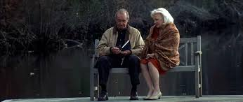 vintage review the notebook a familiar heartbreaking love story the notebook reading