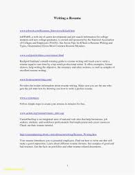 One Page Resume Examples Elegant Resume Builder For Mac