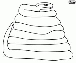 Kleurplaten Reptielen Kleurplaat