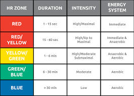 Understanding Heart Rate Zones And Energy Metabolism