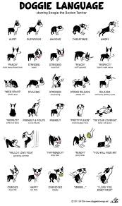 Incredibly Detailed Charts Will Help You Speak Your Dogs