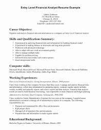 Business Analyst Resume Summary Examples Entry Level Marketing Resume Samples designapkin 67
