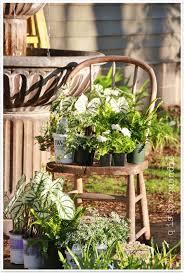 spring window box plants