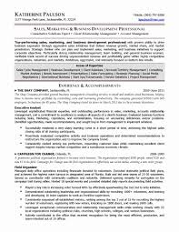 Territory Sales Manager Resume Template Best Of Business Development