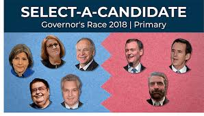 Wisconsin Candidate Comparison Chart Quiz Which Gubernatorial Candidate Do You Agree With Most
