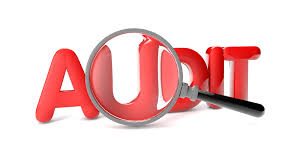 Image result for Audit