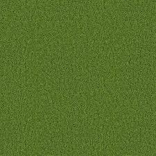 green carpet texture. Seamless Green Carpet Grass Like Texture