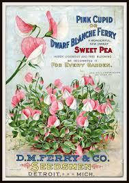 1296 best seed nursery catalogs images on free garden catalogs
