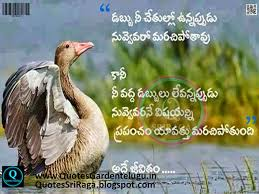 Images Of Motivational Quotes In Telugu Best Quotes For Your Life