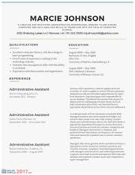Chronological Order Resume Example The Most Templates