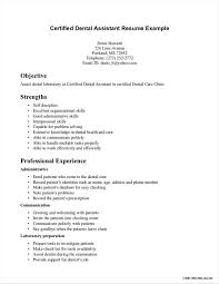 Free Resumes Builder Online Free Job Resume Builder Template No Cost Print In Pertaining To 44