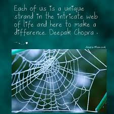 Man Did Not Weave The Web Of Life He Is Merely A Strand In