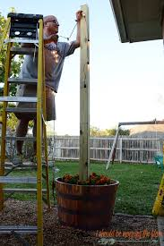 see how this entire area came together in the end with the star of the show our diy sy planted posts
