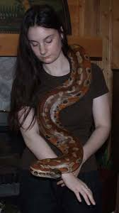 milk snake size couple of pictures plus a new snake