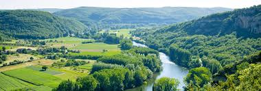 Image result for French forest in Lot et Garonne