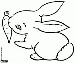 Kleine Konijn En Een Wortel Kleurplaat Kleurplaten Bunny