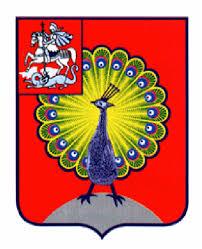 Контрольно счетная палата города серпухова Документ