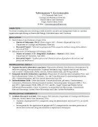 Sample Resume Job Objectives Sample Resume Objective For College